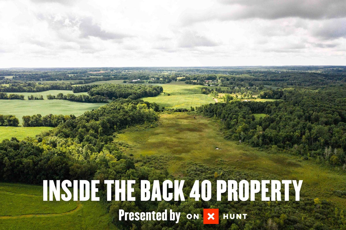 Back 40 Property Overview
